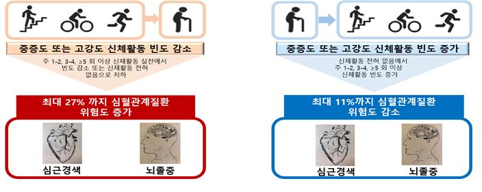 그림 2 중등도(moderate), 고강도(vigorous) 활동 빈도에 따른 심근경색과 뇌졸중 위험도 변화를 나타낸 그림.